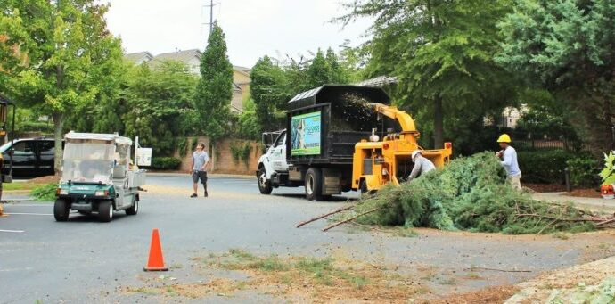 Commercial-Tree-Services-Fort Wayne Tree Trimming and Stump Grinding Services-We Offer Tree Trimming Services, Tree Removal, Tree Pruning, Tree Cutting, Residential and Commercial Tree Trimming Services, Storm Damage, Emergency Tree Removal, Land Clearing, Tree Companies, Tree Care Service, Stump Grinding, and we're the Best Tree Trimming Company Near You Guaranteed!