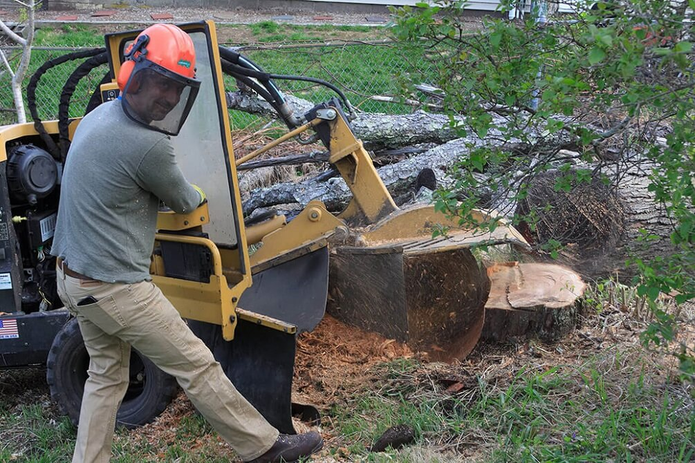 Contact Us-Fort Wayne Tree Trimming and Stump Grinding Services-We Offer Tree Trimming Services, Tree Removal, Tree Pruning, Tree Cutting, Residential and Commercial Tree Trimming Services, Storm Damage, Emergency Tree Removal, Land Clearing, Tree Companies, Tree Care Service, Stump Grinding, and we're the Best Tree Trimming Company Near You Guaranteed!