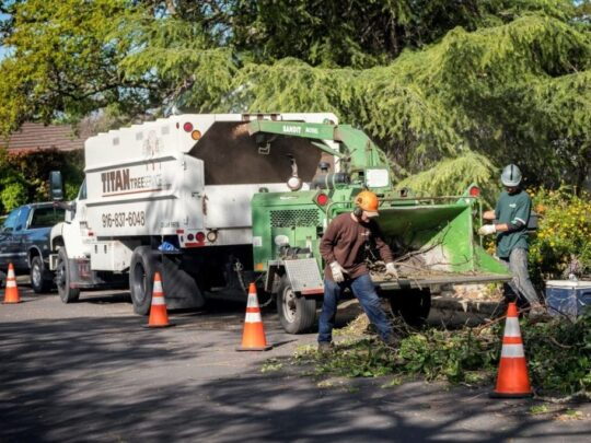 Residential-Tree-Services-Fort Wayne Tree Trimming and Stump Grinding Services-We Offer Tree Trimming Services, Tree Removal, Tree Pruning, Tree Cutting, Residential and Commercial Tree Trimming Services, Storm Damage, Emergency Tree Removal, Land Clearing, Tree Companies, Tree Care Service, Stump Grinding, and we're the Best Tree Trimming Company Near You Guaranteed!