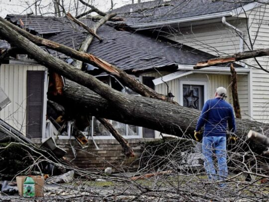 Storm-Damage-Fort Wayne Tree Trimming and Stump Grinding Services-We Offer Tree Trimming Services, Tree Removal, Tree Pruning, Tree Cutting, Residential and Commercial Tree Trimming Services, Storm Damage, Emergency Tree Removal, Land Clearing, Tree Companies, Tree Care Service, Stump Grinding, and we're the Best Tree Trimming Company Near You Guaranteed!