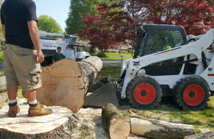 New Haven-Fort Wayne Tree Trimming and Stump Grinding Services-We Offer Tree Trimming Services, Tree Removal, Tree Pruning, Tree Cutting, Residential and Commercial Tree Trimming Services, Storm Damage, Emergency Tree Removal, Land Clearing, Tree Companies, Tree Care Service, Stump Grinding, and we're the Best Tree Trimming Company Near You Guaranteed!